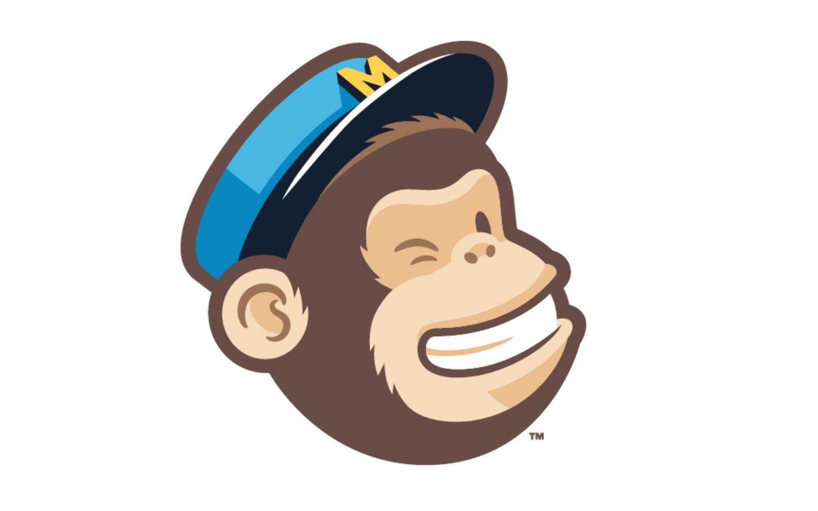 mailchimp facebook adverteren